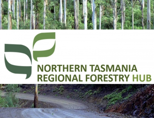 Survey: Northern Tasmania Regional Forestry Hub: Culture, Skills and Training Assessment