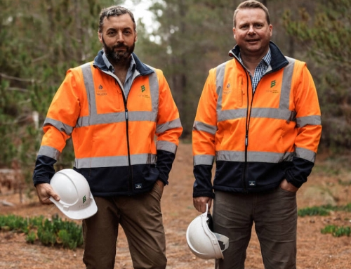 SFM wins major softwood estate management contract