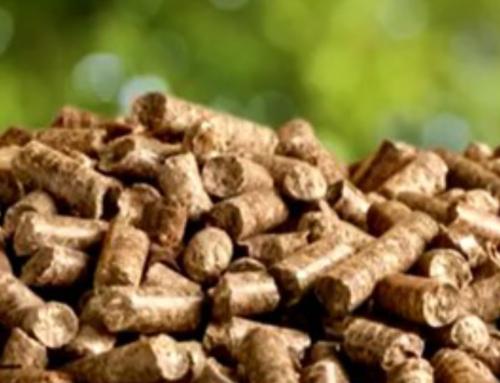 Neville Smith Forest Product's win prestigious EPA award
