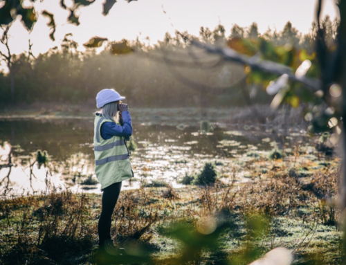 MEDIA RELEASE: Tasmania Forestry Hub