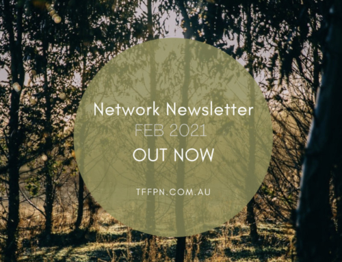Network Newsletter- Feb 2021