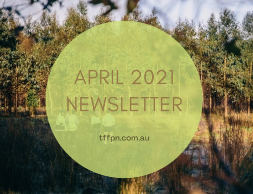 TFFPN April 2021 Newsletter
