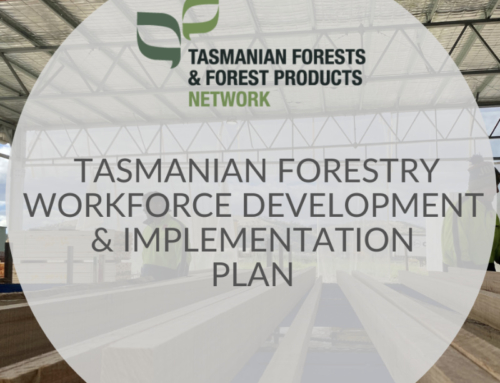 TFFPN launches Plan to bolster and secure forest industry workforce